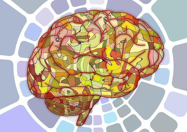 neuromarketing en pymes -ClandBus